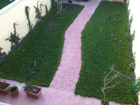 Ayuda dise o jardin peque o 33m2 foro de jardines dise o for Jardines pequenos redondos
