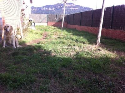 Remodelar el jard n ayuda for Como remodelar mi jardin