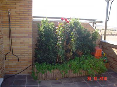 Tico con sombra en madrid c mo decorar con poco dinero - Cubrir terraza atico ...