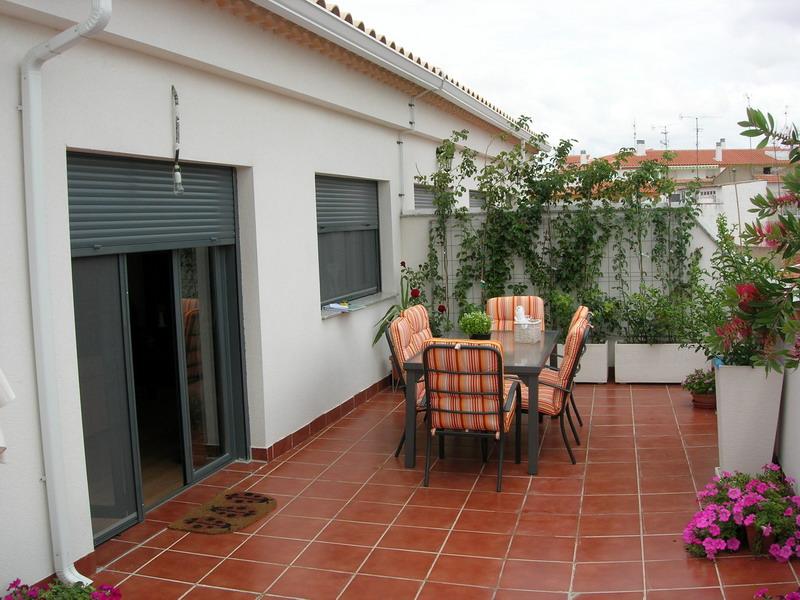 Arbustos y plantas recomendadas para terraza en albacete for Arbustos para patios