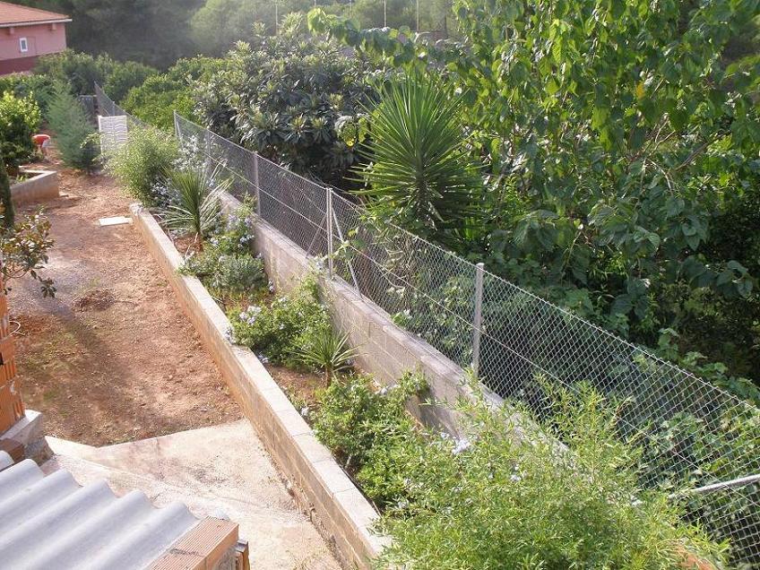 Poner algo de color en jardinera for Que plantas poner en una jardinera